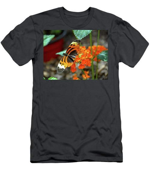 Ismenius Tiger Butterfly Men's T-Shirt (Athletic Fit)