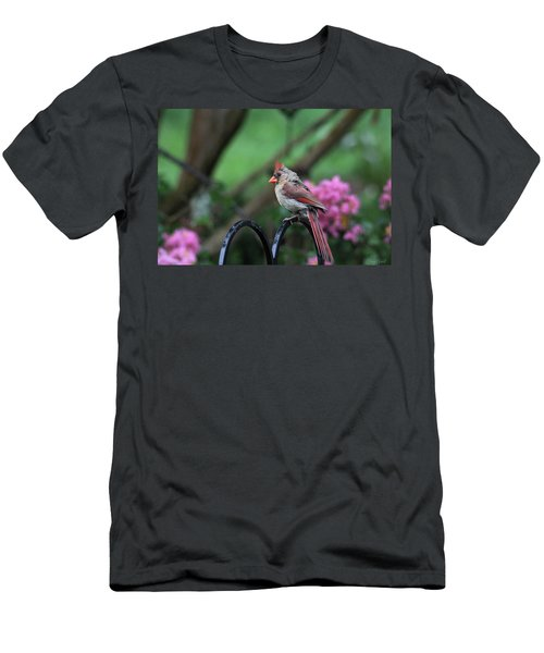 Men's T-Shirt (Athletic Fit) featuring the photograph Isn't She Lovely by Trina Ansel