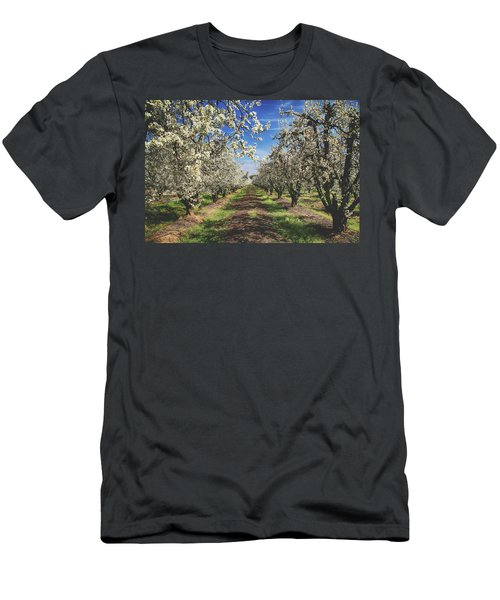 Men's T-Shirt (Slim Fit) featuring the photograph It's A New Day by Laurie Search