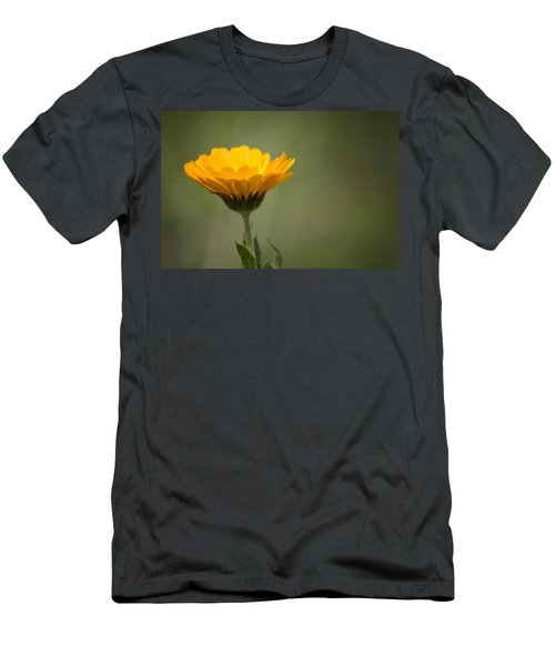It's Spring Men's T-Shirt (Athletic Fit)