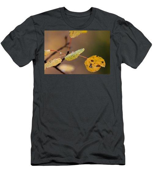 Jewels Of Autumn Men's T-Shirt (Athletic Fit)