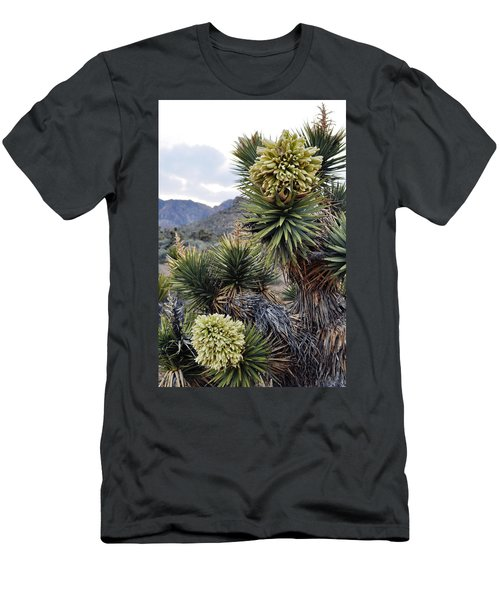 Joshua Tree Bloom Rainbow Mountain Men's T-Shirt (Athletic Fit)