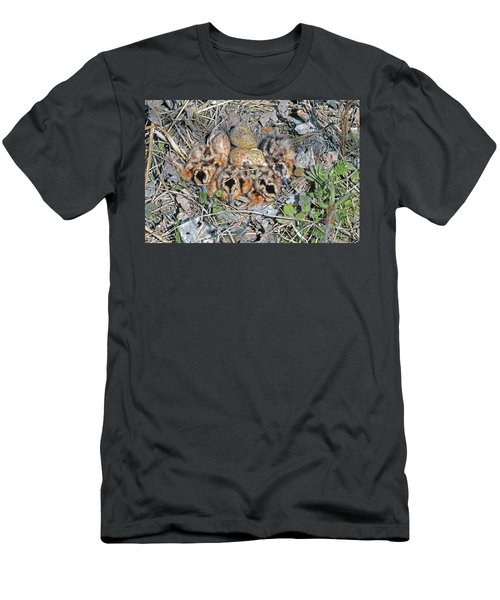 Just Hatched American Woodcock Chicks Men's T-Shirt (Slim Fit) by Asbed Iskedjian