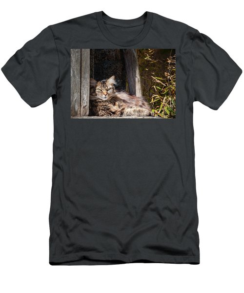 Just Lazing Around Men's T-Shirt (Athletic Fit)