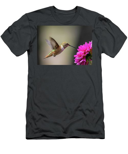 Juvenile Rufous Hummingbird And Pink Dahlia Men's T-Shirt (Athletic Fit)