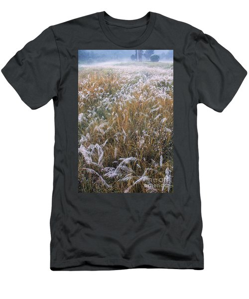 Kans Grass In Mist Men's T-Shirt (Athletic Fit)