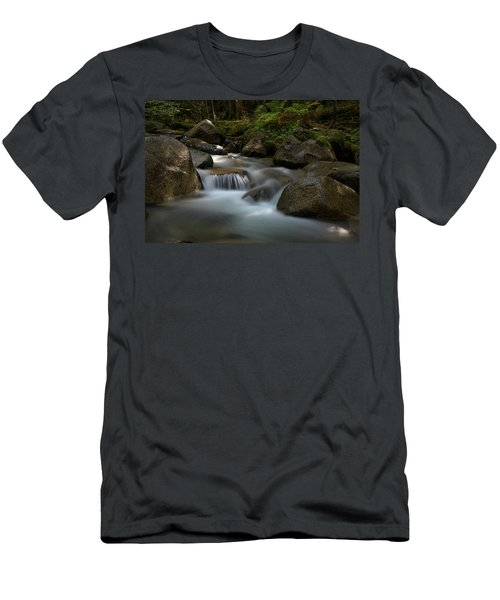 Katahdin Stream In The Shade Men's T-Shirt (Athletic Fit)