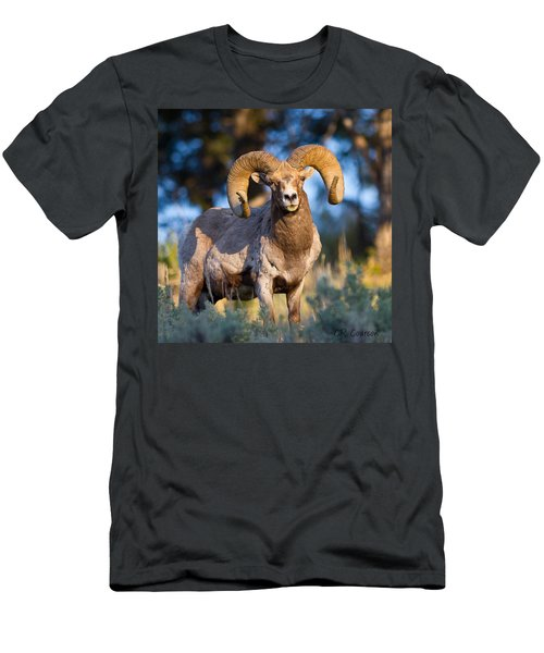 Keeping Watch Men's T-Shirt (Slim Fit) by CR  Courson