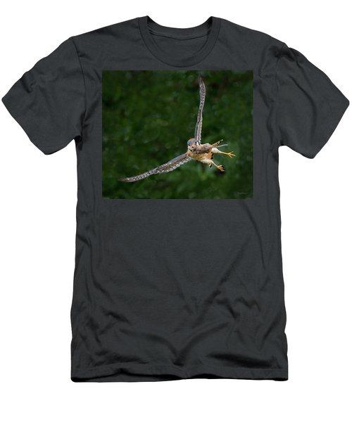 Kestrel With Prey Men's T-Shirt (Athletic Fit)