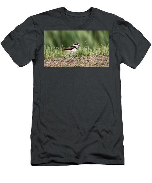 Killdeer - 24 Hours Old Men's T-Shirt (Athletic Fit)