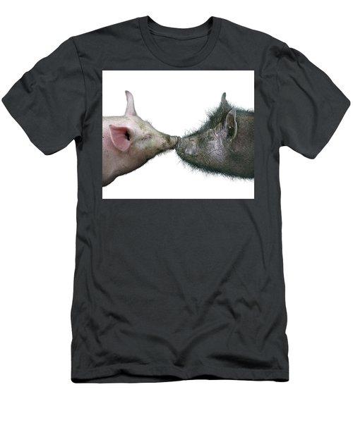 Kissing Pigs Men's T-Shirt (Slim Fit) by James Larkin