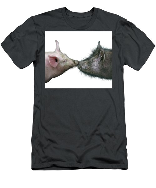 Kissing Pigs Men's T-Shirt (Athletic Fit)