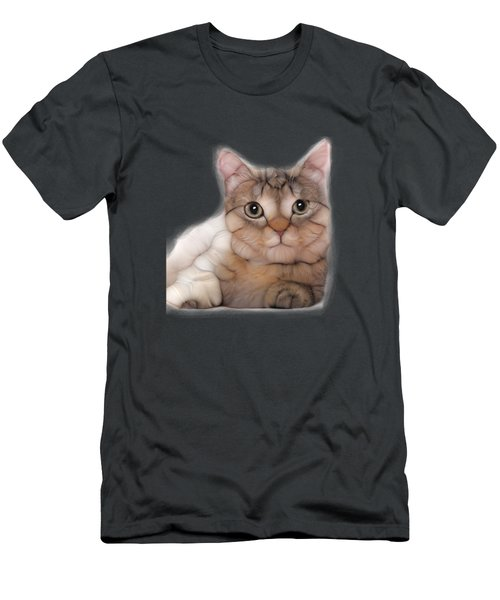 Kitten Cat Posing For Portret Men's T-Shirt (Athletic Fit)