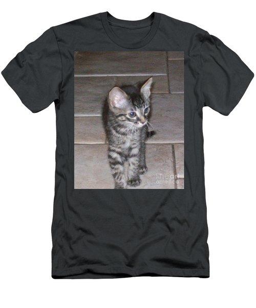 Martius Kitten Men's T-Shirt (Athletic Fit)
