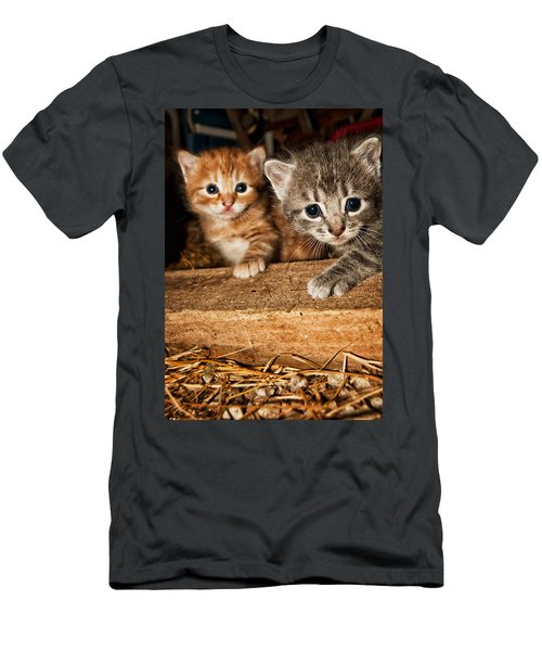 Kittens Men's T-Shirt (Athletic Fit)