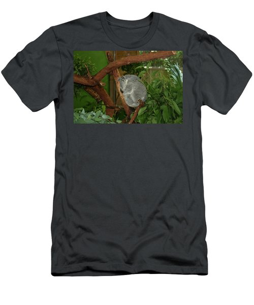 Men's T-Shirt (Slim Fit) featuring the photograph Koala by Cathy Harper