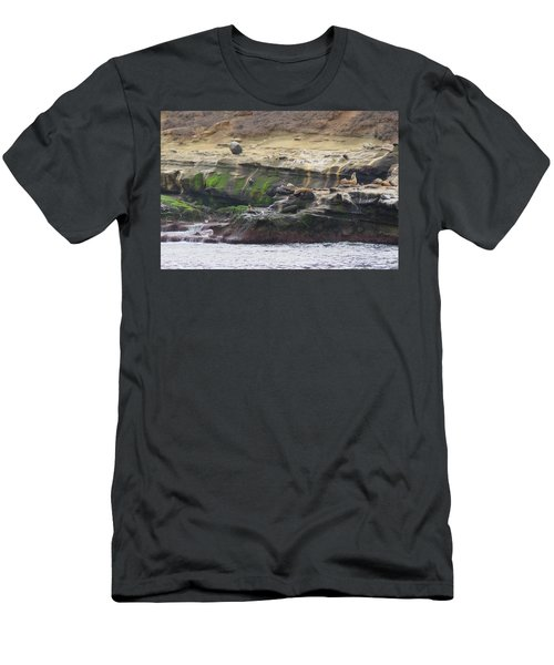 La Jolla Sea Lions Men's T-Shirt (Athletic Fit)
