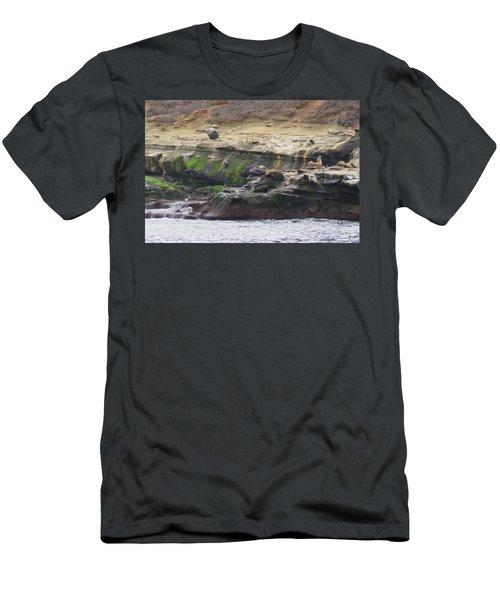La Jolla Sea Lions Men's T-Shirt (Athletic Fit)