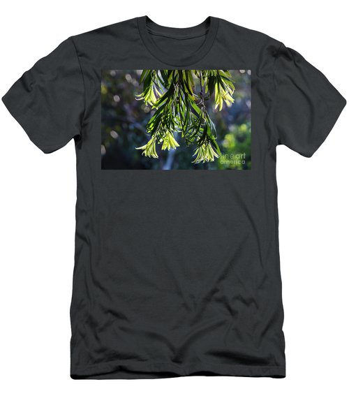 Lacey Leaves Men's T-Shirt (Athletic Fit)