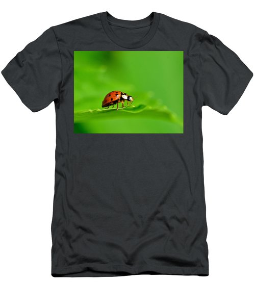 Lady Bug Men's T-Shirt (Athletic Fit)