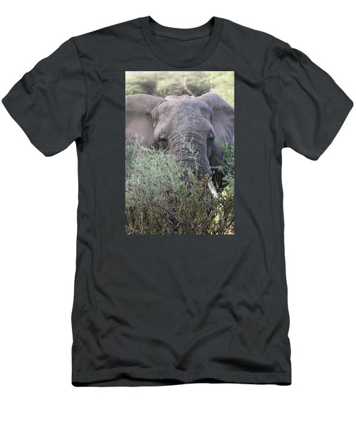 Men's T-Shirt (Slim Fit) featuring the photograph Lake Manyara Elephant by Gary Hall