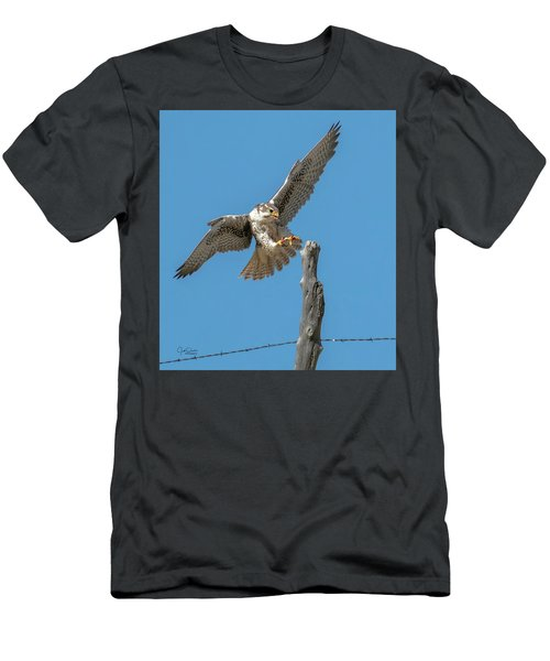 Landing Prairie Falcon Men's T-Shirt (Athletic Fit)