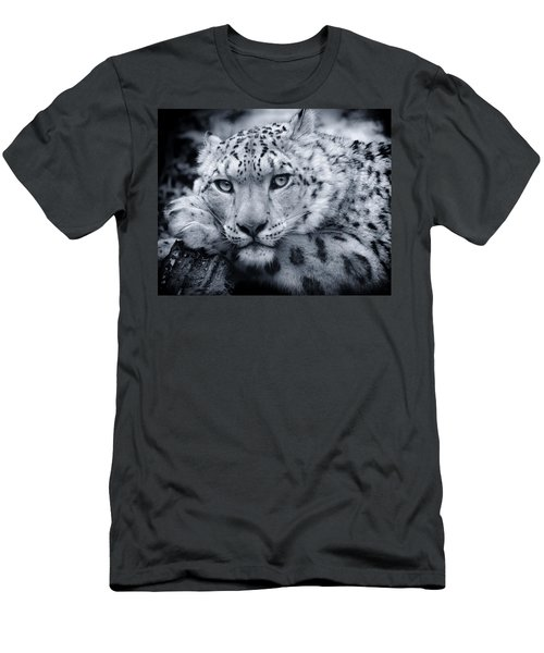 Large Snow Leopard Portrait Men's T-Shirt (Athletic Fit)