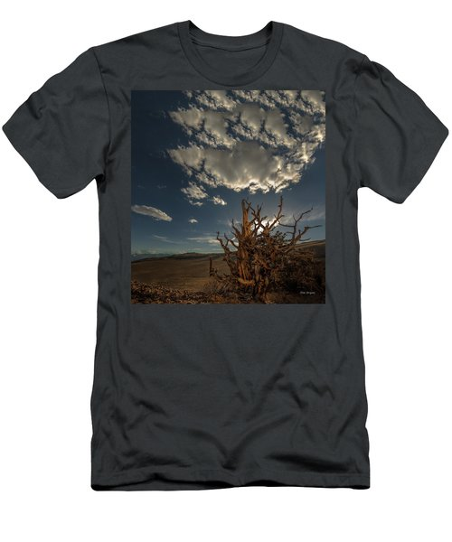 Late Afternoon In The Bristlecone Forest Men's T-Shirt (Athletic Fit)