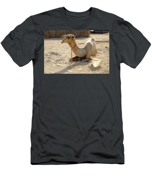 Men's T-Shirt (Athletic Fit) featuring the photograph Camel Laughing by August Timmermans