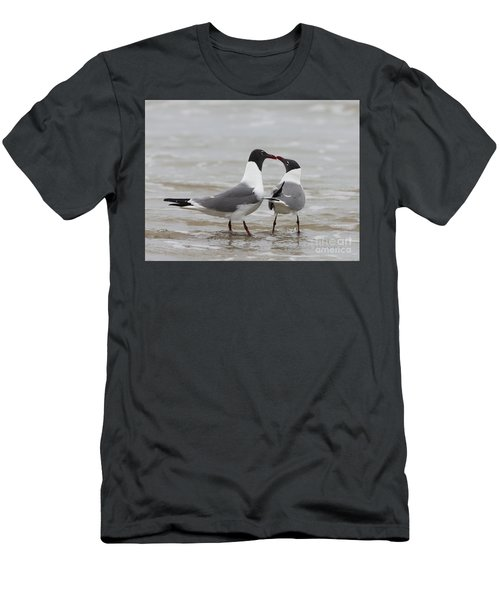 Laughing Gulls In Love Men's T-Shirt (Athletic Fit)
