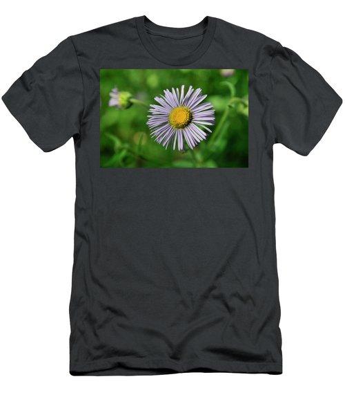 Lavender Serenity Men's T-Shirt (Athletic Fit)