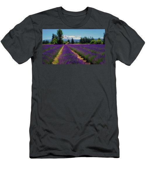 Lavender Valley Farm Men's T-Shirt (Athletic Fit)
