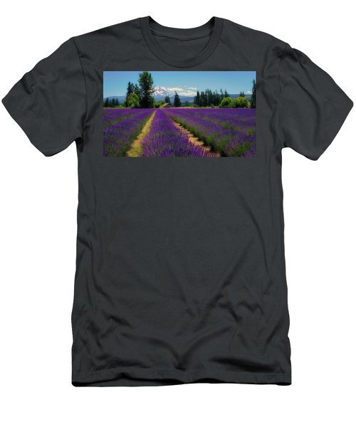 Lavender Valley Farm Men's T-Shirt (Athletic Fit)