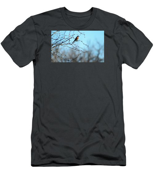 Lazuli Bunting Looks Out Men's T-Shirt (Athletic Fit)