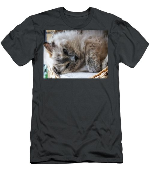 Lazy Kitty Men's T-Shirt (Slim Fit) by Karen Stahlros