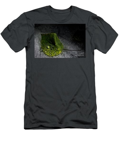 Leaf Droplets Men's T-Shirt (Athletic Fit)