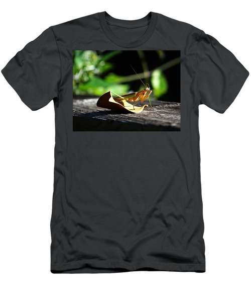 Leafy Praying Mantis Men's T-Shirt (Athletic Fit)