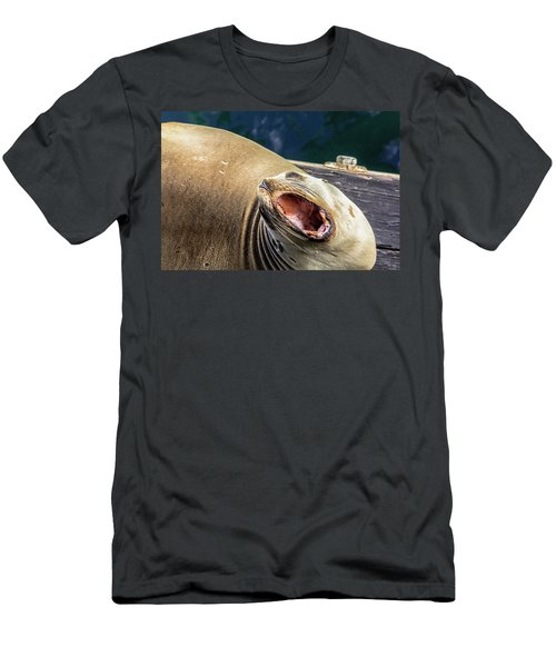 California Sea Lion Yawn Men's T-Shirt (Athletic Fit)