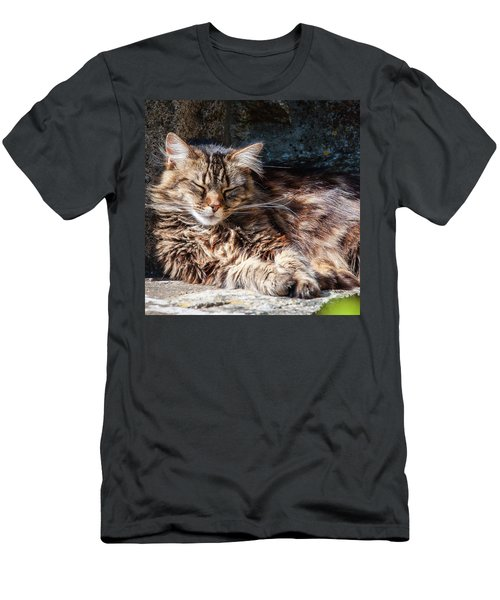 Let Me Sleep... Men's T-Shirt (Athletic Fit)