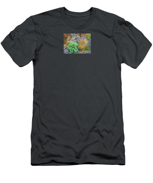 Lichen Rainbow   Men's T-Shirt (Athletic Fit)