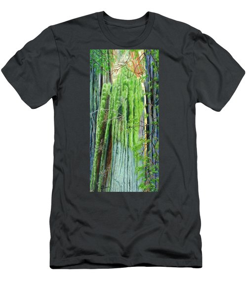 Life In A Redwood Forest Men's T-Shirt (Athletic Fit)