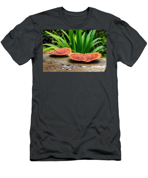 Life On A Log Men's T-Shirt (Athletic Fit)