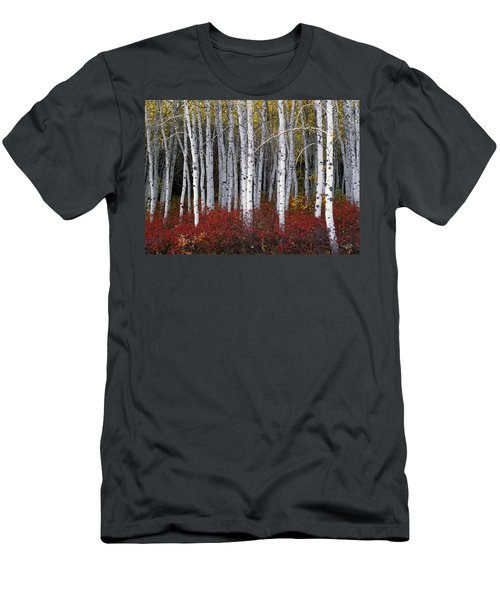 Light In Forest Men's T-Shirt (Athletic Fit)