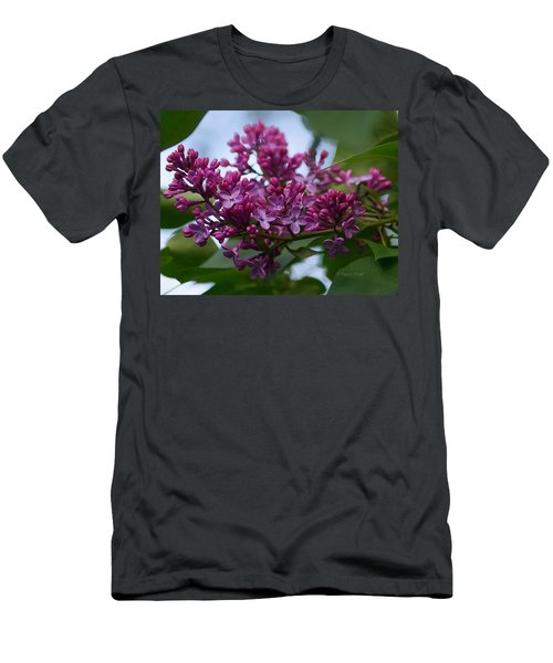 Lilac Buds Men's T-Shirt (Athletic Fit)