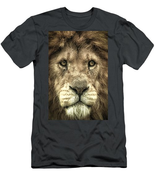 Lion Portrait Men's T-Shirt (Athletic Fit)