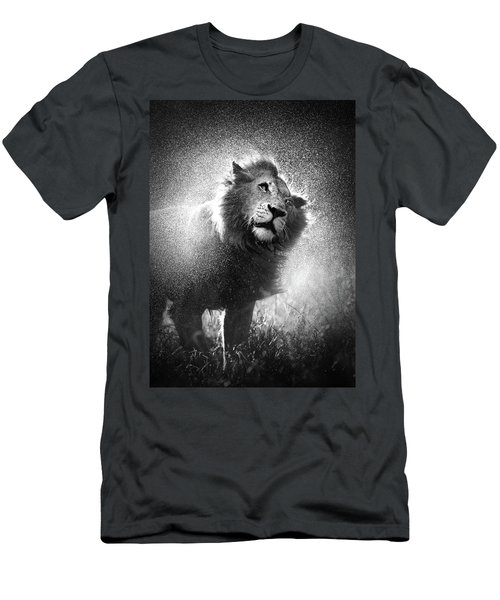 Lion Shaking Off Water Men's T-Shirt (Athletic Fit)