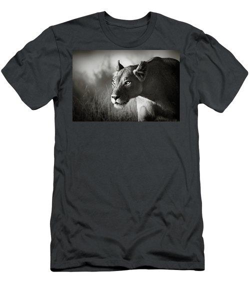 Lioness Stalking Men's T-Shirt (Athletic Fit)