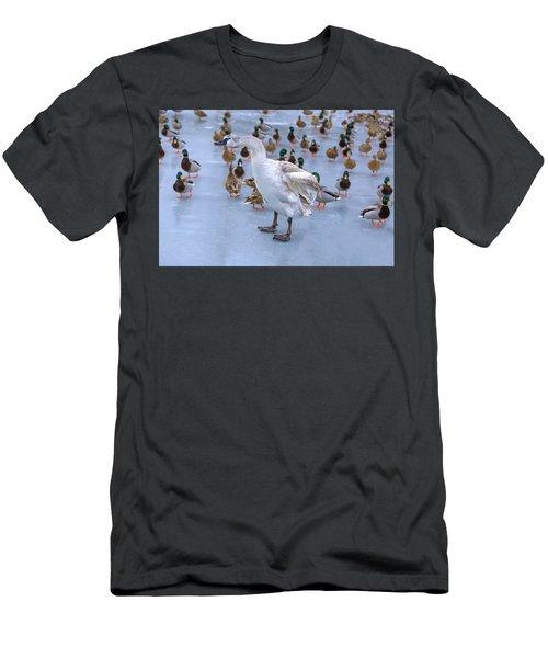 Listen Up You Ducks Men's T-Shirt (Athletic Fit)