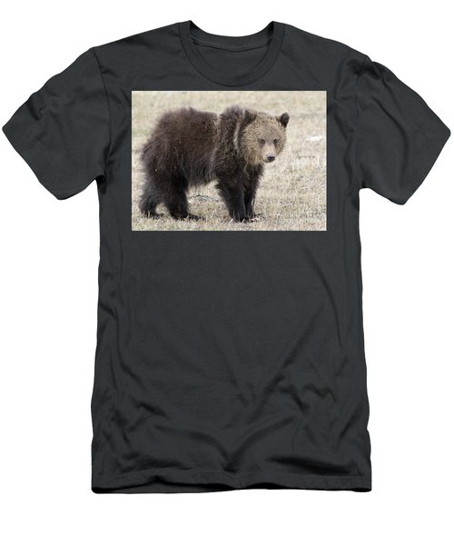 Little America Cub Men's T-Shirt (Athletic Fit)