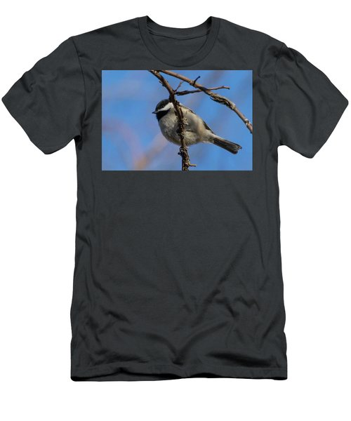 Little Chickadee Men's T-Shirt (Athletic Fit)